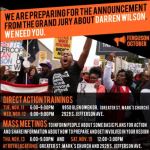 "Ferguson: Protests Scheduled for 83 Cities, ""Direct Action Trainings"" Held for Protesters"