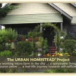 Suburban Permaculture Transforms Neighborhoods