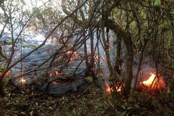 Hawaii Lava Flow: Pahoa Businesses Prepare for Possible Evacuations