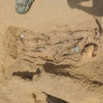 Estimated 1M mummified bodies found in Egyptian necropolis, some 7ft tall