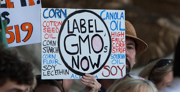 Oregon GMO Recount Monsanto genetic