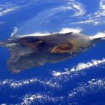 Island of Hawaii From the International Space Station
