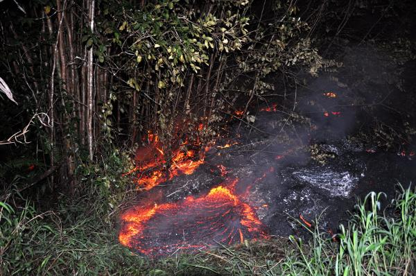 June 27th lava flow burns vegetation as it approaches a property boundary above Pāhoa early on the morning of Tuesday, October 28, 2014