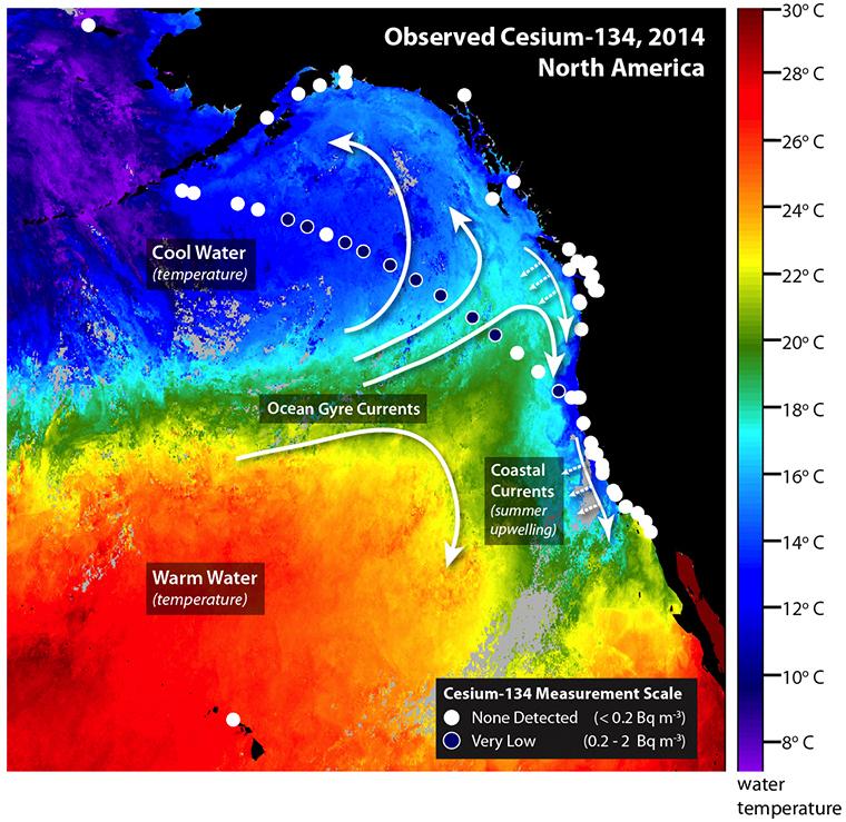 Fukushima Radiation Identified off Northern California