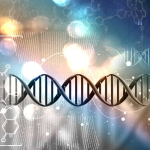 Frequency, DNA and The Human Body