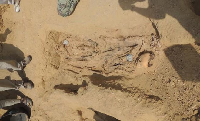 Estimated 1M mummified bodies found in Egyptian necropolis, some 7ft tall