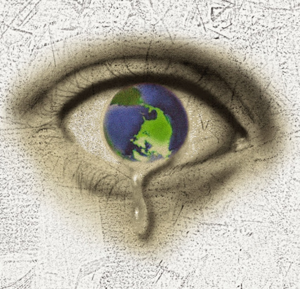 What's to Blame for Our Dying Planet - Freda 2012