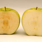 USDA Approves World's First GMO Apples