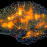 DARPA's 'Cortical Modem' Will Plug Straight Into Your BRAIN